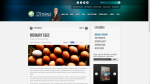 proof_StreamsMinistriesInternational-OrdinaryEggs_28-05-2015